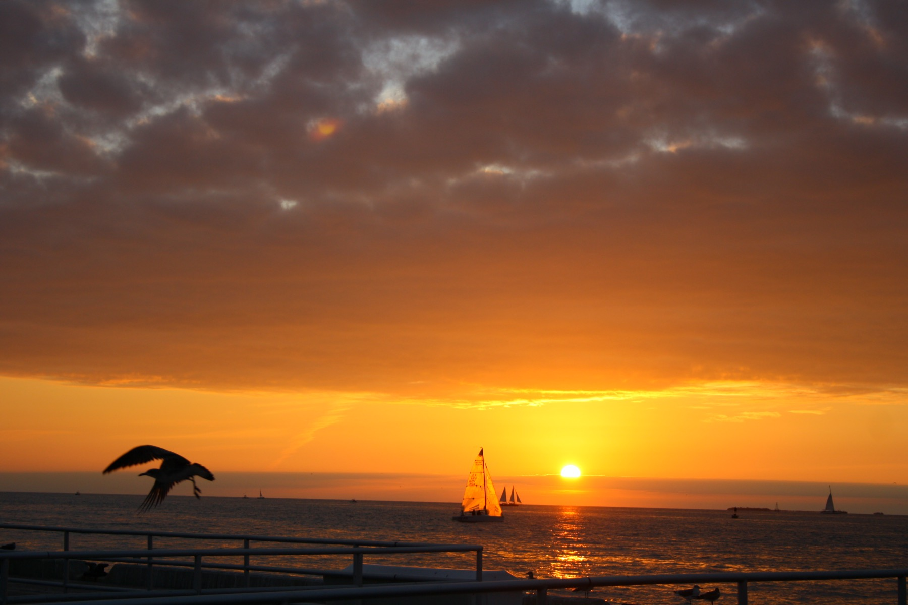 Sunset Celebration a Key West, poche ore di macchina da Miami