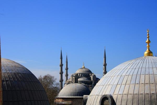 Moscheablu1