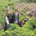 Northern Territory: cosa vedere al Lichtfield National Park