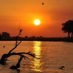 Viaggi nell'Africa meridionale, cosa vedere in Namibia e Botswana
